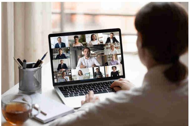 Pedagog Virtual Meetings